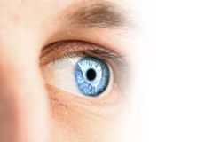Blaues Auge Stockbilder
