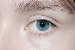 Blaues Auge Stockfotos