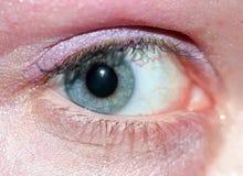 Blaues Augen-Makro Stockbilder