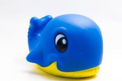 Blaues balena Lizenzfreies Stockfoto
