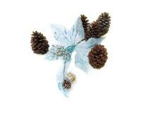 Blaues Blumengewebe mit Kiefernkegeln Stockfoto