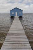 Blaues Bootshaus auf Fluss Stockbild
