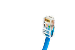 Blaues Computer-Ethernet-Kabel lokalisiert auf weißem Hintergrund, Nahaufnahme Stockbilder
