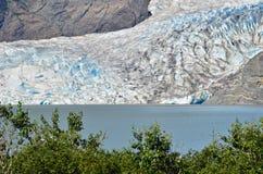 Blaues Eis Stockbilder