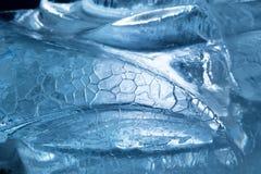 Blaues Eis Lizenzfreie Stockfotos