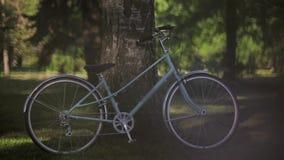 Blaues Fahrrad bleibt am Baum im Park am sonnigen Abend des Sommers Pan horizontal stock video footage