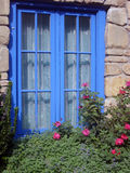 Blaues Feld Fenster mit Blumen lizenzfreie stockbilder