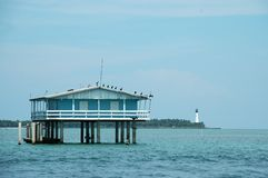 Blaues Haus in Stiltsville Stockfotos