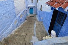 Blaues Medina, Marokko, schmale kleine Straßen des Hocharabisch mit Treppe Stockbilder