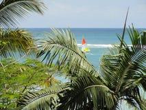 Blaues Meer mit Palmen stockfotografie