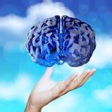 blaues menschliches Glasgehirn 3d auf Natur Stockbilder