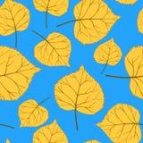 Blaues Muster mit leaves-01 Lizenzfreie Stockfotografie