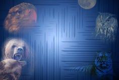 Blaues Muster mit Tieren Stockfoto