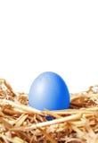 Blaues Osterei in einem Strohnest Lizenzfreies Stockbild