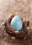 Blaues Osterei im Nest Lizenzfreie Stockfotos