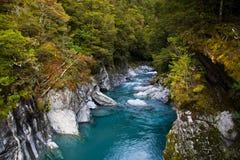 Blaues Pool in Neuseeland stockbilder