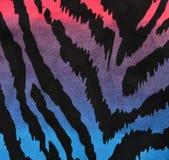 Blaues, purpurrotes, rosa Zebramuster Stockfotos