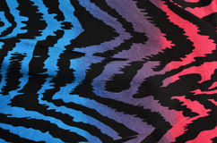 Blaues, purpurrotes, rosa Zebramuster Stockbild