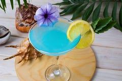 Blaues tropisches Seefeiertagscocktail Lizenzfreie Stockfotos