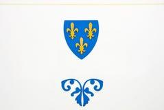 Blaues und gelbes Emblem Lizenzfreie Stockfotos