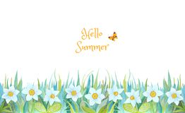 Blaues und grünes Gras mit hellen Blumen stockfotos