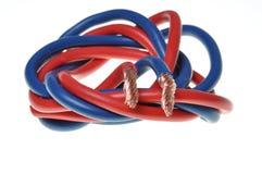 Blaues und rotes Netzkabel lizenzfreie stockfotos