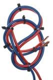 Blaues und rotes Netzkabel stockbild