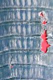 Blaues und schädigendes Krokodilleder Lizenzfreies Stockfoto