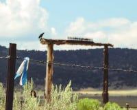 Blaues und weißes Band auf einem Zaun im New Mexiko lizenzfreie stockbilder