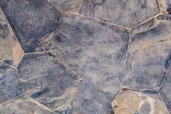 Blaues Veilchen des Polygonfelsen-Hintergrundes Stockfoto