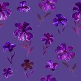 Blaues violettes purpurrotes Blumenillustrationsmuster - nahtloses Blumenmuster Lizenzfreie Stockfotografie
