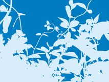 Blaues Wachstum Stockbild