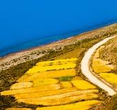 Ackerland durch Yamzho Yumco Lizenzfreies Stockfoto