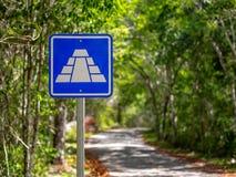 Blaues Zeichen, das entlang Mayapyramiden im mexikanischen Dschungel anzeigt lizenzfreie stockbilder