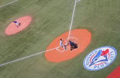 Blauhäher-Logo auf Feld Stockbild