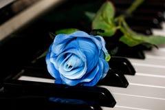 Blaurose auf einem Klavier Stockbilder