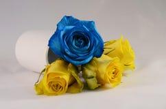 Blaurose und Blumen der gelben Rosen Lizenzfreies Stockbild