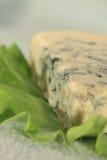 Blauschimmelkäse auf einem Blatt des Salats Stockfotografie