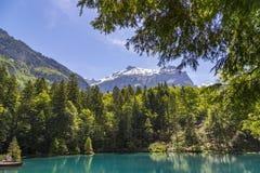 Blausee或蓝色湖自然公园在夏天, Kandersteg,瑞士 免版税库存照片