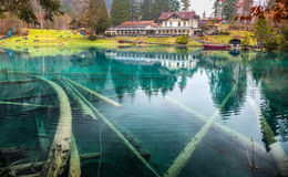 Blausee, die Schweiz - Hotel Forellenzucht III Stockfotos