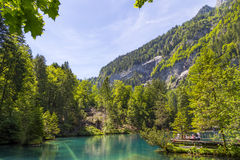 Blausee eller den blåa sjönaturen parkerar i sommar, Kandersteg, Schweiz Fotografering för Bildbyråer