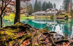 Blausee, Svizzera - hotel Forellenzucht II Fotografie Stock Libere da Diritti