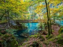 Blausee, Svizzera - ponticello di legno II Fotografie Stock Libere da Diritti