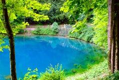 Blautopf Spring Pond Stock Images