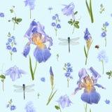 Blauw bloempatroon Stock Afbeeldingen