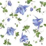 Blauw bloempatroon Stock Foto's
