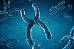 Blauw chromosoom Stock Fotografie
