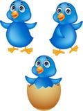 Blauw de vogelbeeldverhaal van de baby Stock Foto