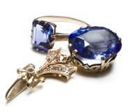Blauw duet Royalty-vrije Stock Foto's