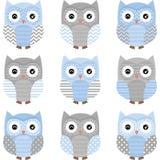 Blauw en Grey Cute Owl Collections Stock Foto